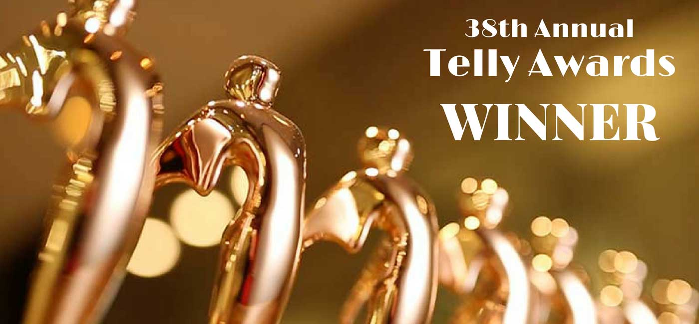 2017 Telly Award Winner